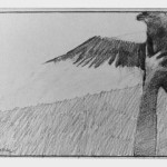 Study for Freed Bird 1974