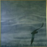 Sea Poem 1988