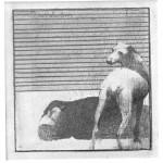 Incident 2 1976